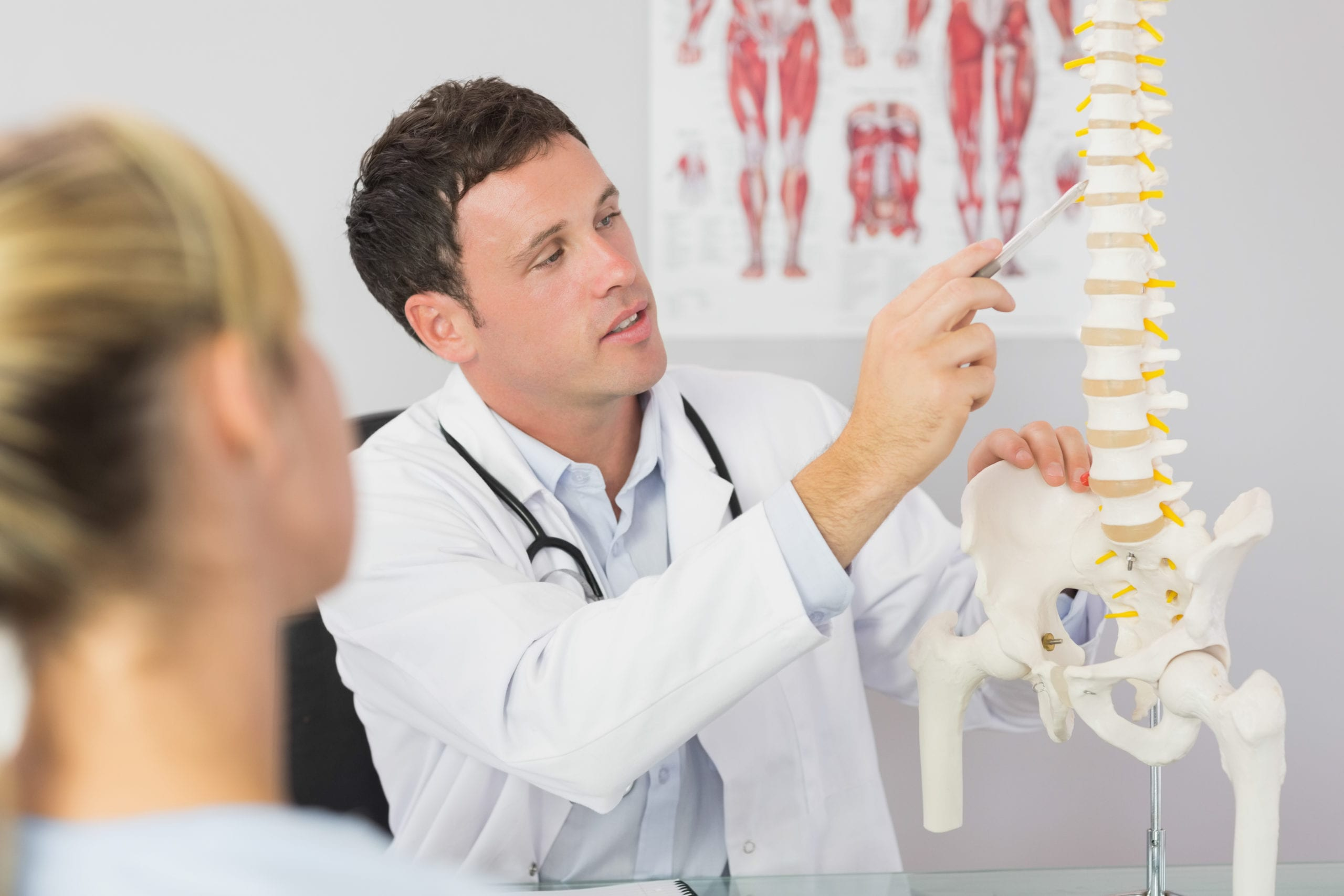 chiropractor with patient showing skeleton model
